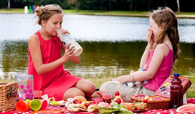 Lekker picknicken op een mooie zomerdag