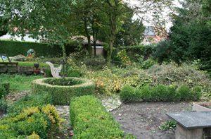 Weblog - Uit liefde voor de tuin