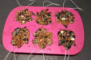 Weblog: Vogelrestaurant maken