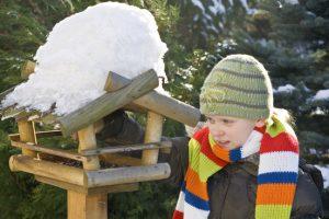kerstmaal tuinvogels