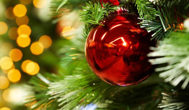 Verschillende soorten kerstbomen