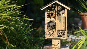 Zo maak je je eigen insectenhotel!