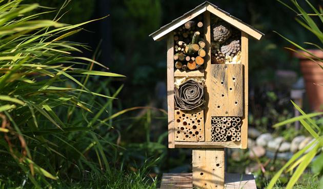 Maak je eigen insectenhotel!