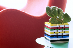 cactusbasis-lego---mooiwatp