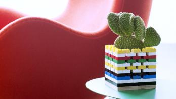 DIY-tip: Bouw je eigen cactus-basis
