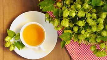 Hop-thee maken