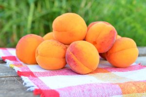 abrikozen