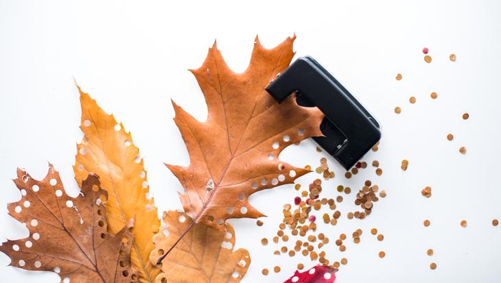 Herfstbladeren als confetti