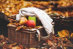 Tijd voor een herfstpicknick