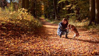 6 tips tegen een herfstdip