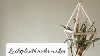 DIY: Luchtplanthouder maken