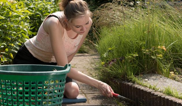 Tuinieren zonder zere knieën