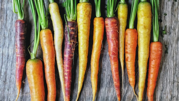 Gekleurde wortels kweken