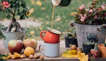 gezellige herfst