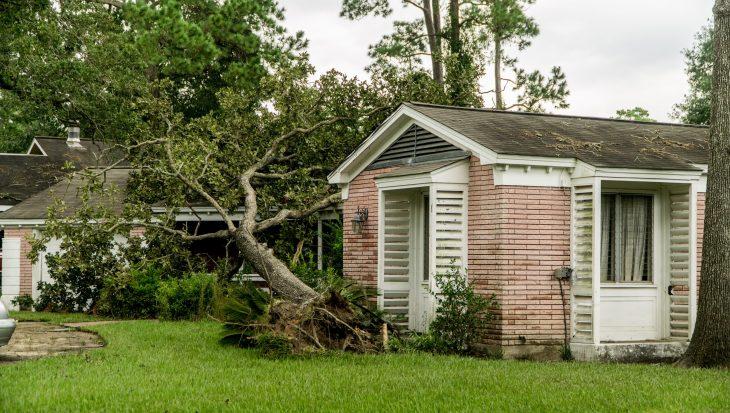 Stormschade: wat wordt er vergoed?