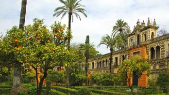 Mediterrane tuinen en cultuur in één reis: beleef het in Zuid-Spanje