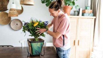 Geluk in huis: welke bloemen je juist nú kan geven