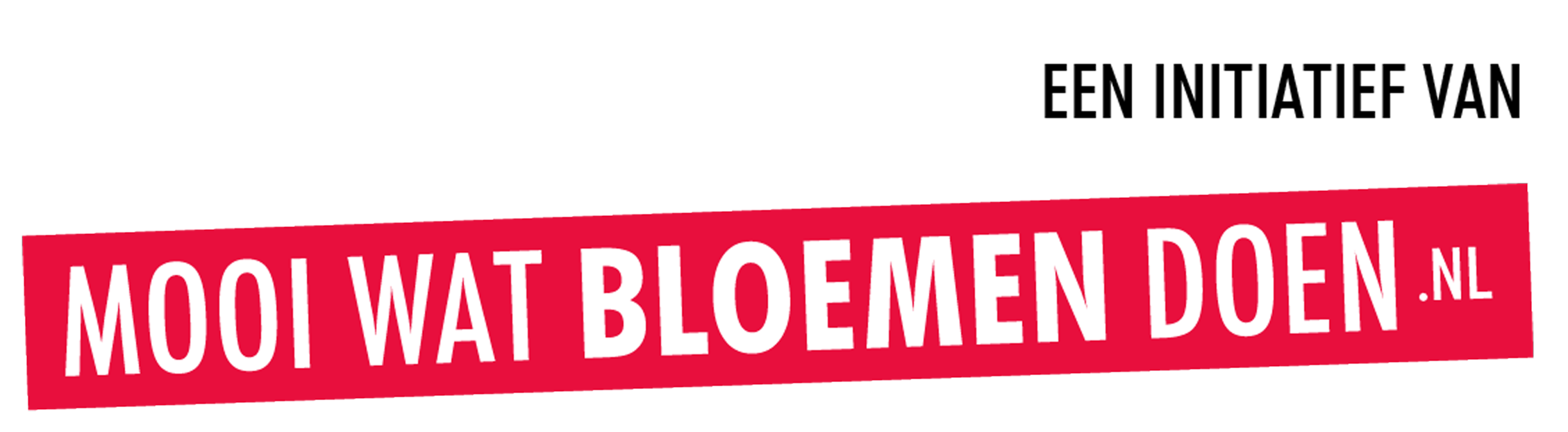 Bloom Bar mooi wat bloemen doen