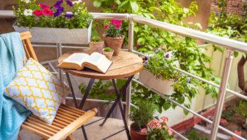 6x boeken voor plantenliefhebbers